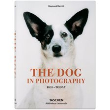 Bog: The Dog in Photography. 1839-today - Af Raymond Merritt
